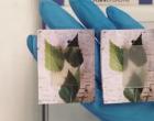 科学家正在测试各种新材料和科学方法 以提高可再生能源的能力