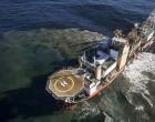 Google,宝马,沃尔沃,三星支持环保电话以暂停深海采矿